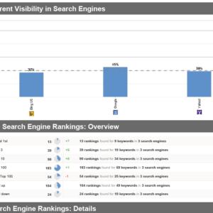Keyword-Ranking-Report