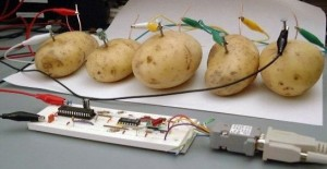 Is your server a slow potato?